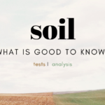 Soil test – what you need to know?